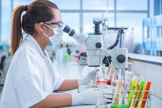 PhD Research Fellowships 2019