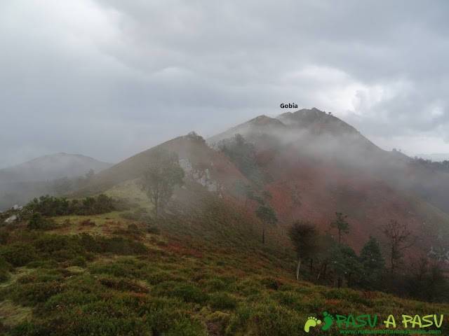 Ruta al Pico Gobia y La Forquita: Camino al Gobia desde el Fitu