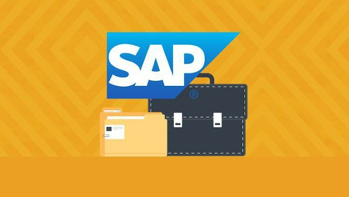 The Complete SAP Business Analytics Course 2020 [Free Online Course] - TechCracked