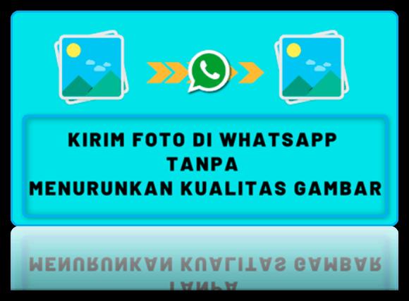 cara kirim foto di whatsapp tanpa mengurangi kualitas aslinya