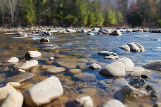 Picture of River with Many Stones