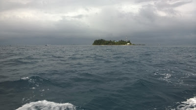 WP 20150125 010 - Travelogue - Maldives, a few more pics