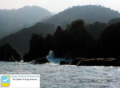 Batu Layar atau Batu Gigi Hiu Lampung