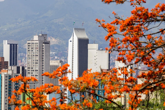 Resultado Estrategia 4-3 Secretaría de Salud, Alcaldía de Medellín