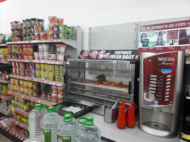 Foto Tikus Hitam dan Gemuk di Makanan Siap Saji Sevel Malaysia jadi Viral