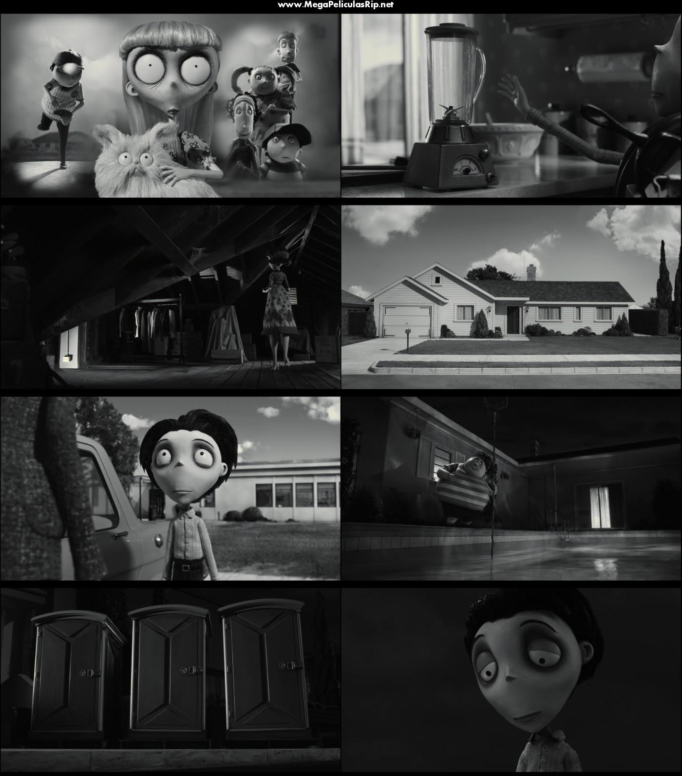 Frankenweenie 1080p Latino