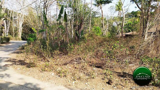 Tanah Luas jalan Godean Km 17