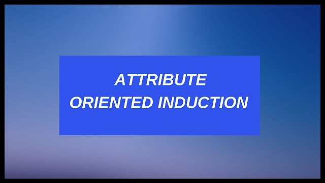 Attribute oriented induction