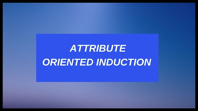 Attribute Oriented Induction In Data Mining - Data Characterization