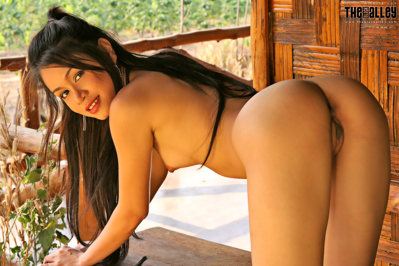 Can not myanmar fuck sexy girl all fantasy