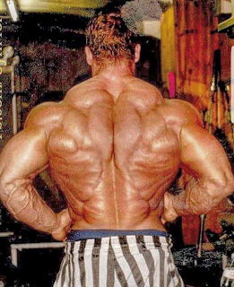 The most famous bodybuilders often have what is called a 'Christmas tree' back.