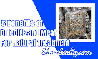5 Benefits of Dried Lizard Meat for Natural Treatment