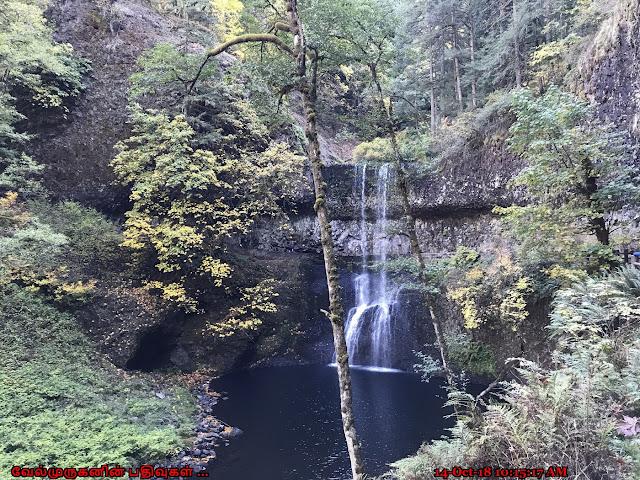 Trail of Ten Falls Lower North Falls