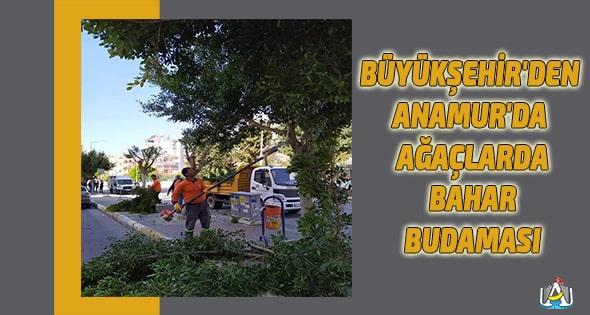 Anamur,Anamur Haber,Anamur Haberleri,Anamur Son Dakika,Mersin Büyük Şehir Belediyesi,