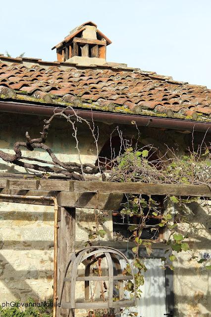 La Pieve, la campagna toscana, l'olio novello e la magnifica cucina del luogo