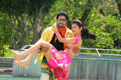 Ninne Korukunna movie photos gallery-thumbnail-2