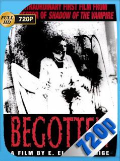 Engendrado (Begotten) (1991) [720p] Cine Mudo [GeyserGP]
