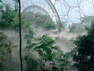 What is the Eden project? One mans review
