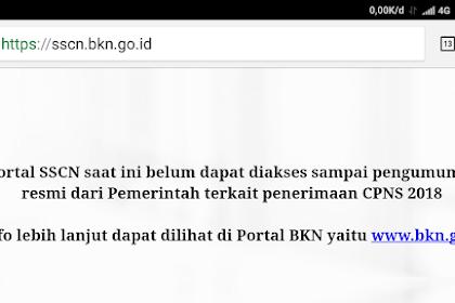 Situs sscn.bkn.go.id belum bisa diakses pukul 7 pagi hari ini