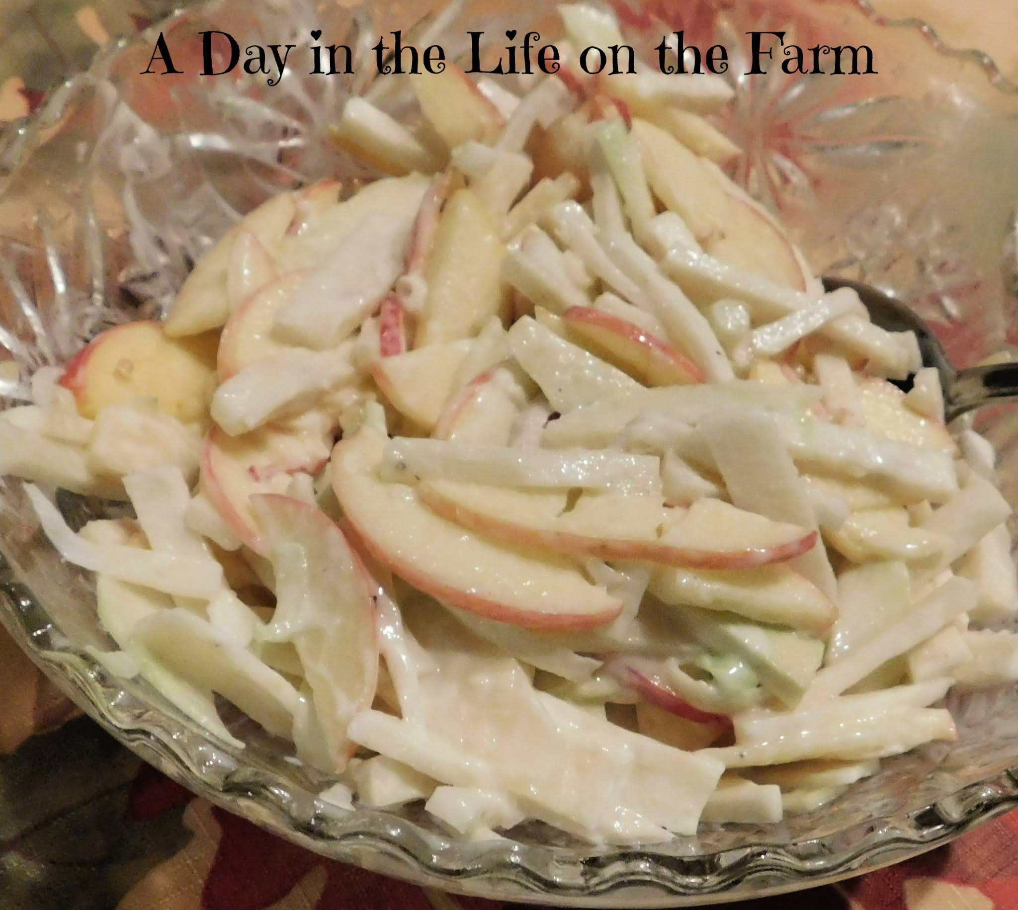 A Day In The Life On The Farm Apple And Kohlrabi Slaw Holidaysides