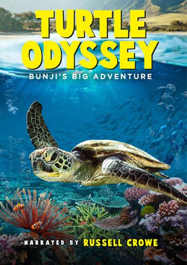 Turtle Odyssey [2018] [DVDR] [NTSC] [Latino]