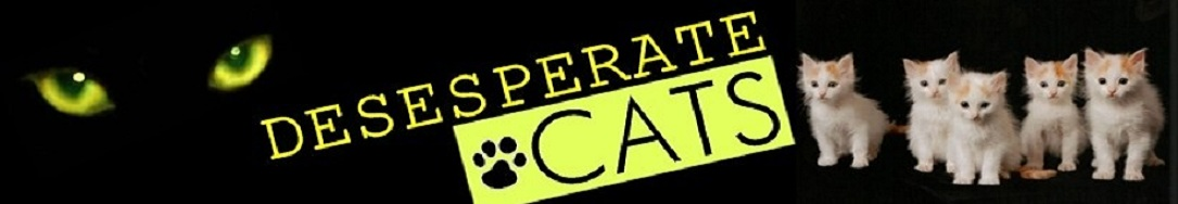 Desesperate Cats
