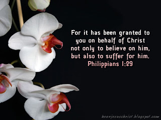 Image result for Philippians 1:29