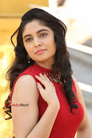 Telugu Actress Zahida Sam Latest Pos in Red Gown at RF Films New Movie Opening  0033.JPG