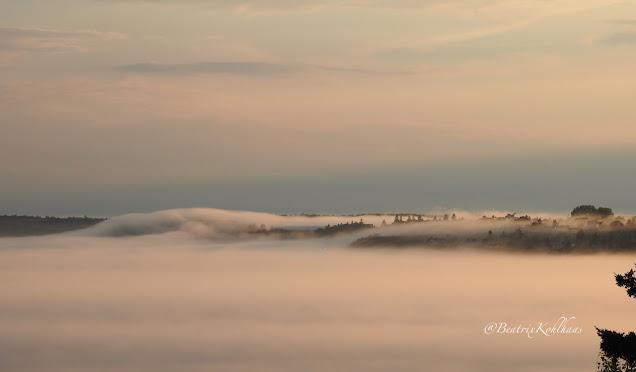 Fog over Eastport, Maine