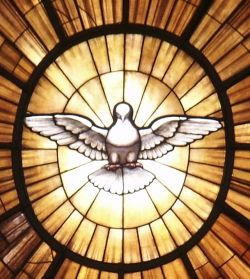St Peter's Basilica Dove Stained Glass Window Photo