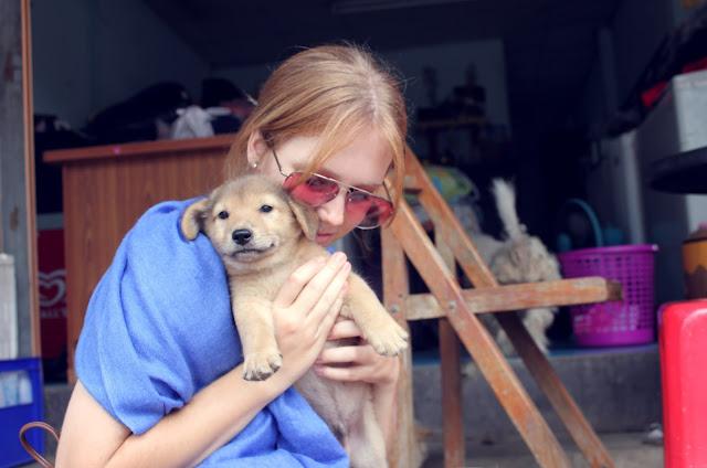 Adrian Fleur puppy