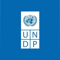 Full Funded - UNDP Graduate Programme 2021/2022 For Young Graduates | Apply Now Here