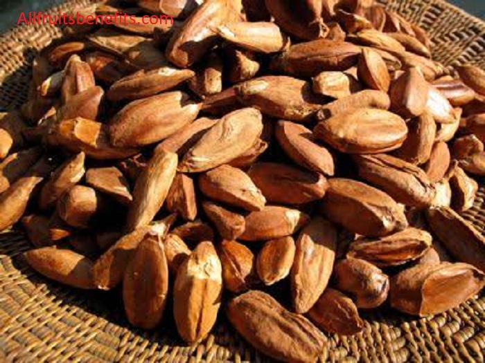 pili nuts benefits,pili nuts benefits and side effects,pili nuts health benefits,pili oil benefits,nutritional value of pili nuts,pili nut oil benefits,pili nuts nutritional benefits