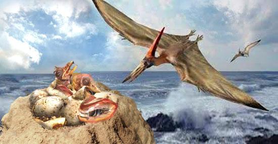 Centenas de ovos de pterossauros foram descobertos em escavação na China - Capa