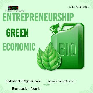 Green entrepreneurship, new economic