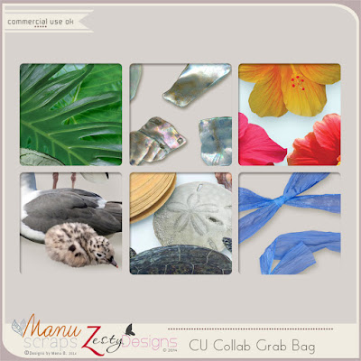 https://www.digitalscrapbookingstudio.com/commercial-use/grab-bags/cu-collab-bag-by-manu-scraps-and-zesty-designs/