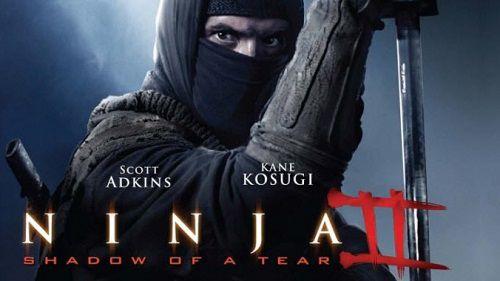 Ninja Báo Thù - Ninja: Shadow Of A Tear (2013)