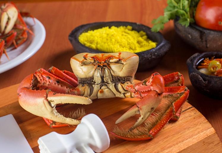 Quinta do caranguejo em Fortaleza, melhores restaurantes