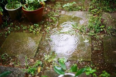 scolo-acque-piovane-nel-giardino-del-vicino