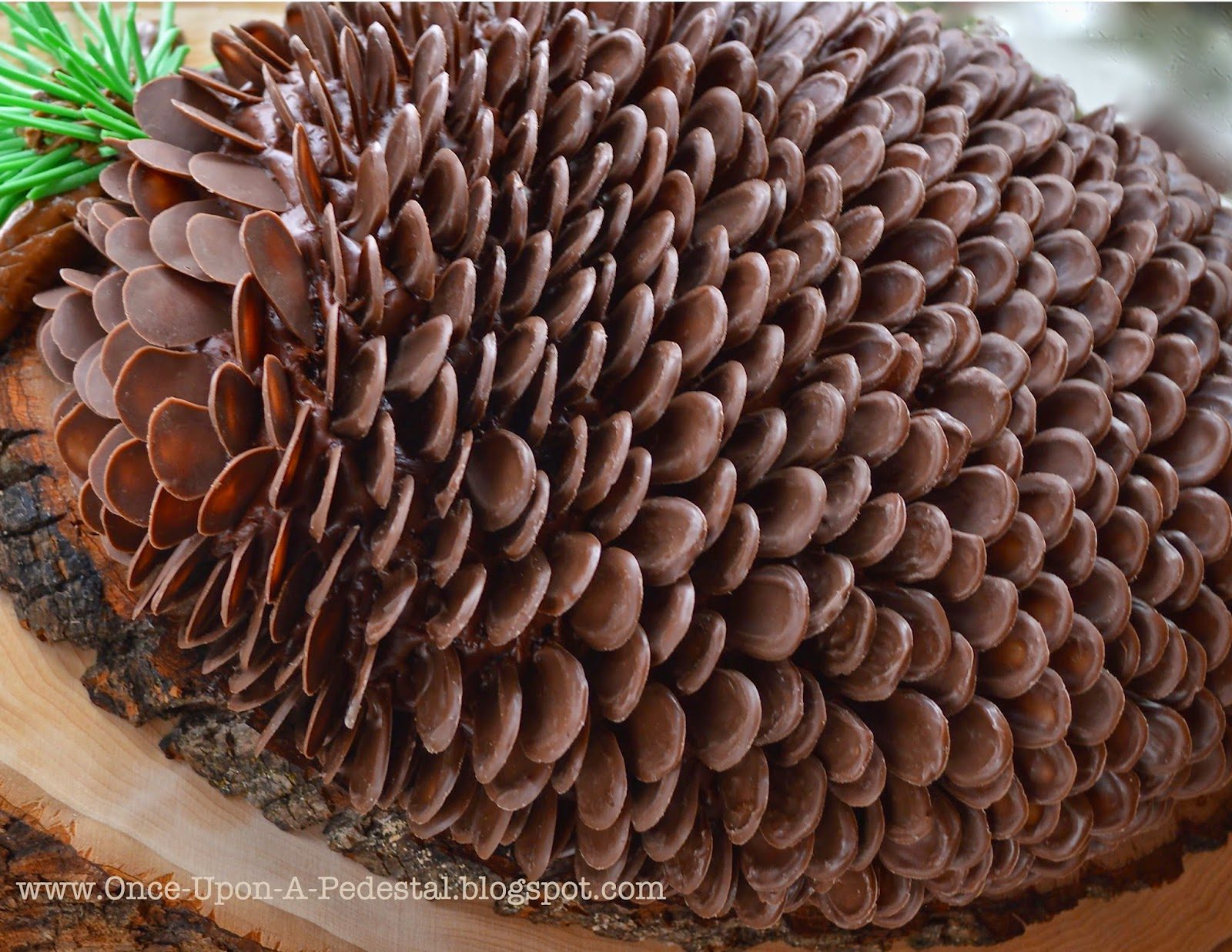 pine-cone-cake-rose-levy-beranbaum-the-cake-bible-christmas-tutorial-deborah-stauch