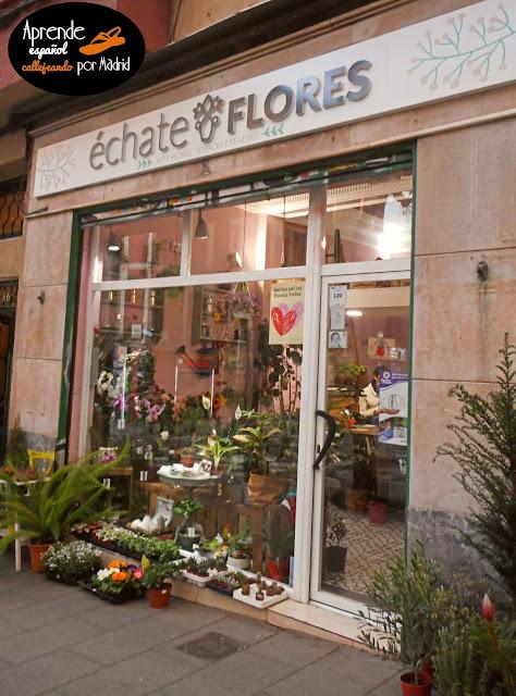 Aprende español callejeando por Madrid: Échale guindas al pavo.