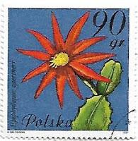 Selo Flor-de-Outubro