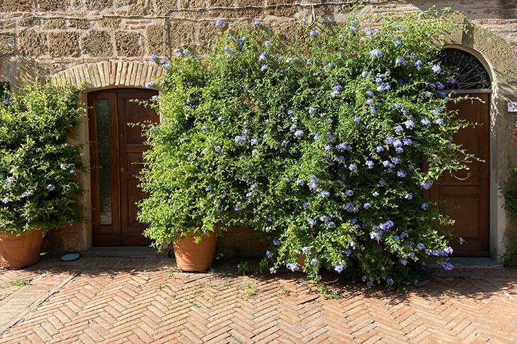 I borghi più belli di Toscana