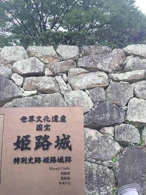 姫路城とネコ