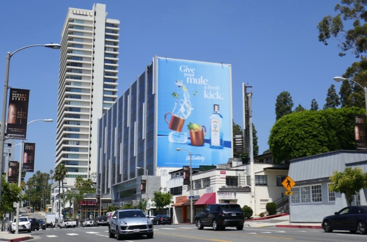 Giant Give Mule fresh kick Bombay Sapphire billboard
