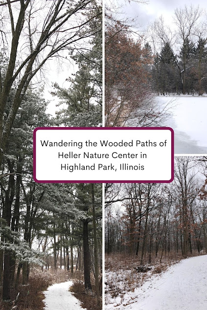Wandering the Wooded Paths of Heller Nature Center in Highland Park, Illinois
