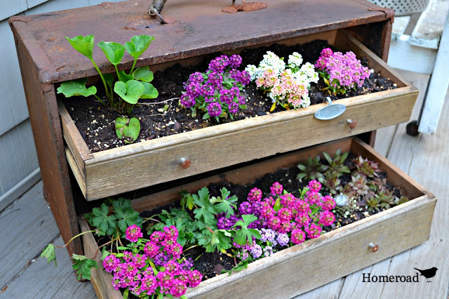 Fill a vintage toolbox with dirt and flowers