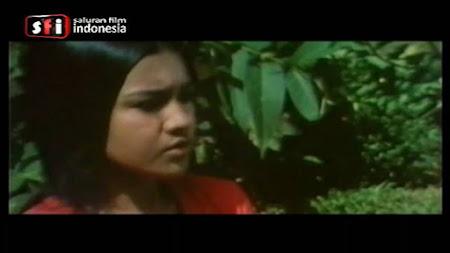 Frekuensi siaran Saluran Film Indonesia di satelit ChinaSat 11 terbaru