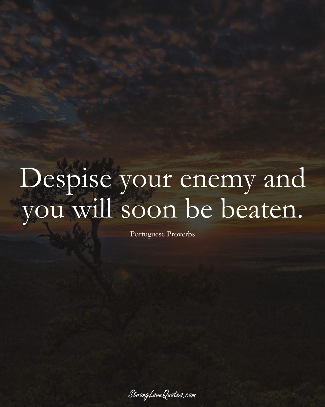 Despise your enemy and you will soon be beaten. (Portuguese Sayings);  #EuropeanSayings
