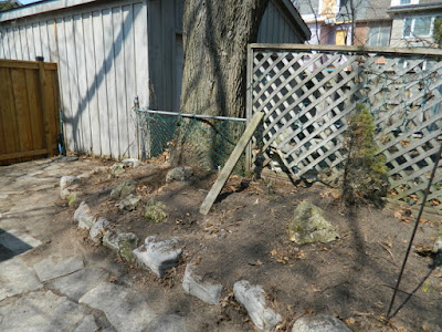 A Toronto Spring Cleanup in Riverdale After by Paul Jung Gardening Services--a Toronto Gardening Company